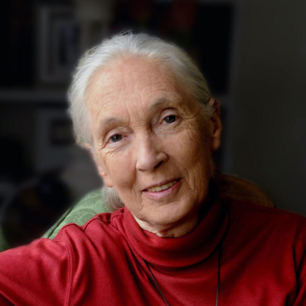 Dr. Jane Goodall, DBE, UN Messenger of Peace